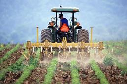 Ilustracja do informacji: Wsparcie dla nowych grup producentów rolnych - nawet 100 tys. euro