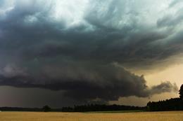 Ilustracja do informacji: Intensywne opady deszczu i silny wiatr