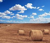 Ilustracja do informacji: ODR. Konkurs wspomnień o warmińsko-mazurskiej wsi