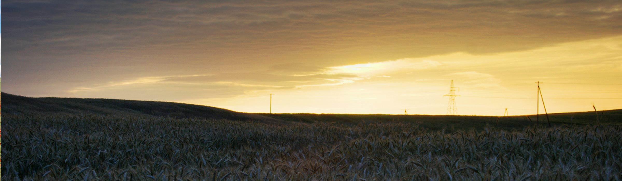 Banner: Sonnenuntergang
